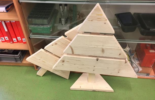 Kerstbomen / Kennemer Praktijkschool